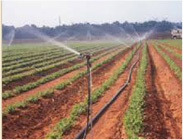 antical para agricultura